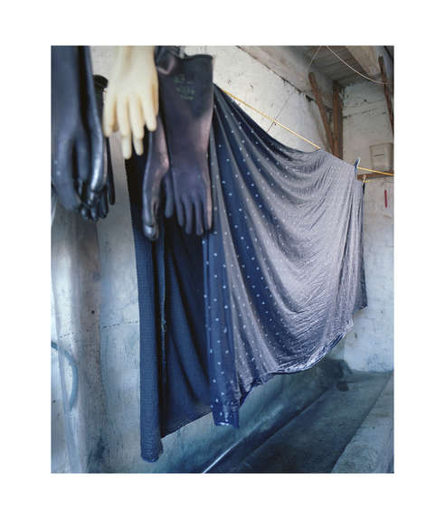 Indigo drying